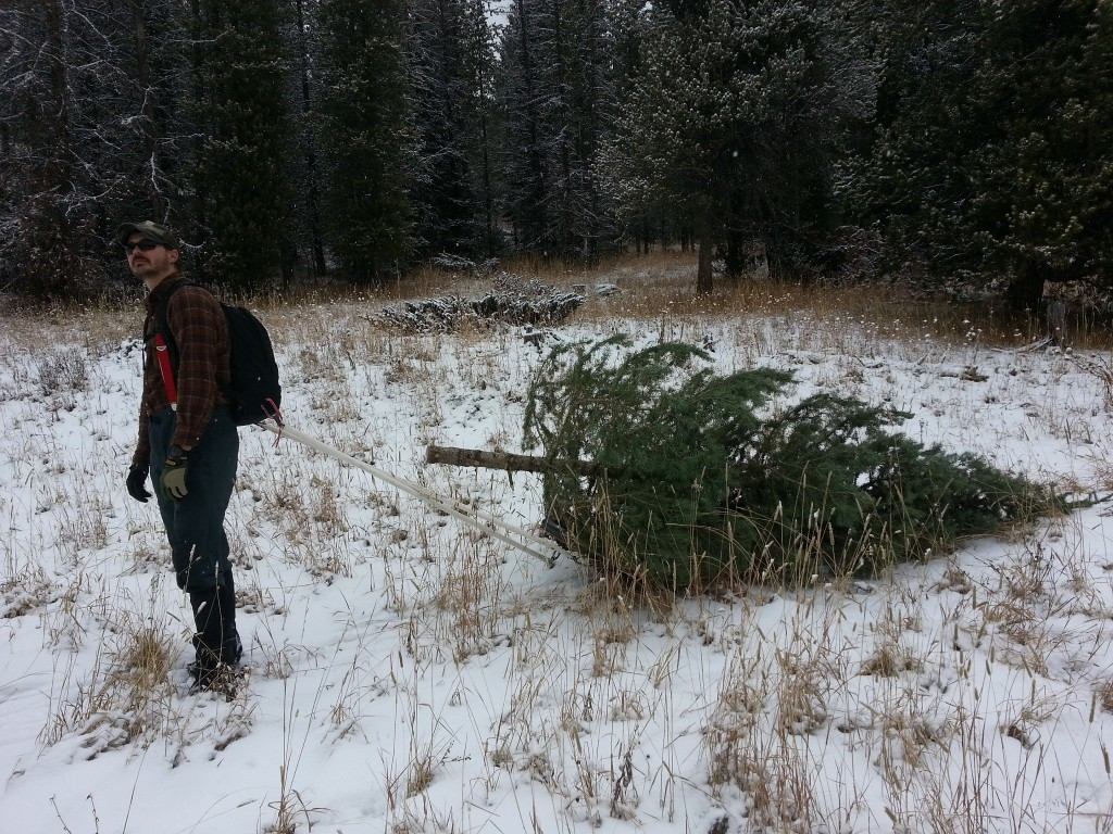 Sam pulls a Christmas tree with his pulk sled and GORUCK GR1